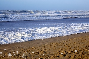 sand-and-sea-1442119-2-m