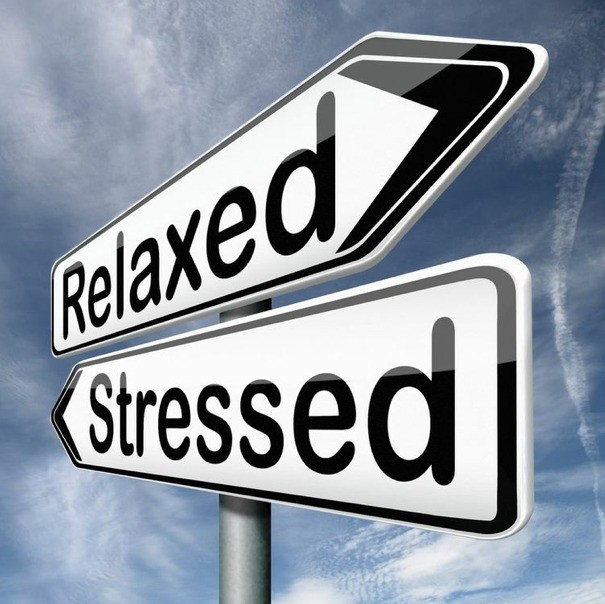 essay on stress faced by students A study on stress level among engineering  the problems and situations encountered by college students may differ from those faced  the student stress.